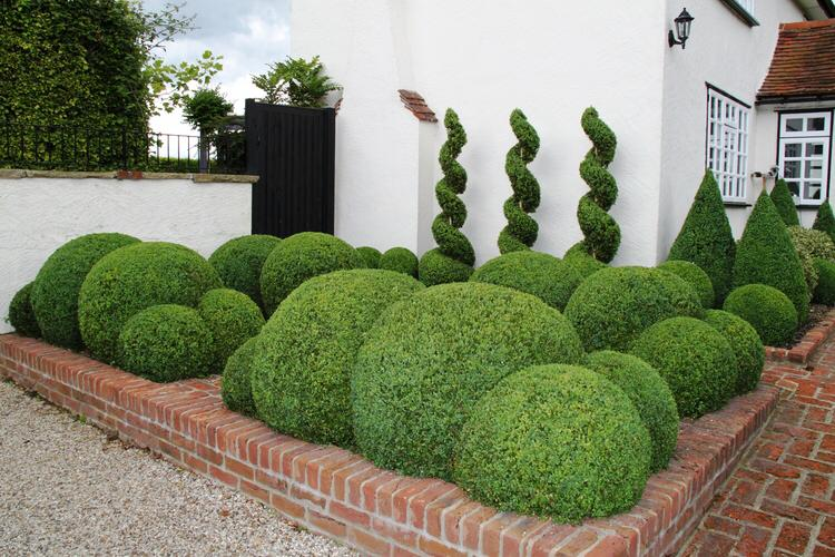 Green Aspects Landscaping Services the London Based Landscapers Image f3